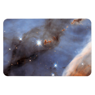 Small Section of the Carina Nebula Rectangular Photo Magnet