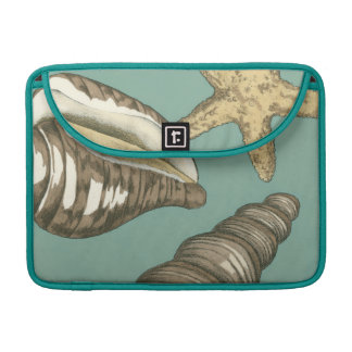 Small Shell Trio on Teal Sleeve For MacBooks
