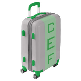 SMALL Silver + Light Green Monogram Carry On Bag Luggage
