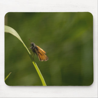 Small Skipper Butterfly Mouse Pad