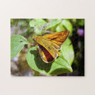 Small Skipper Butterfly Photo Puzzle with Gift Box