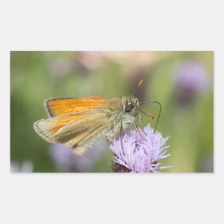 Small Skipper Butterfly Rectangular Sticker