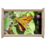 Small Skipper Butterfly Serving Tray