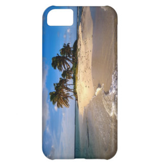 Small Solitary Island iPhone 5 Case
