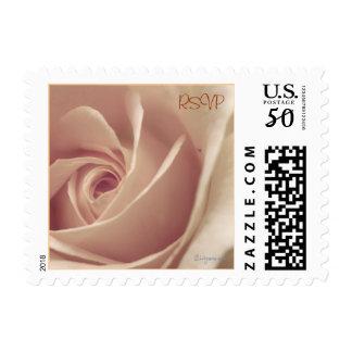 Small Square Mauve Rose Wedding Postal Stamp