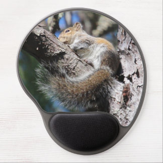 Small Squirrel in Pine Tree Fork Sunning Gel Mouse Pad