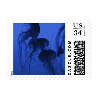 "Small Stamp, 1.8"" x 1.3"" PHOTOGRAPH OF JELLYFISH 2 Postage"