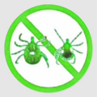 Small Stickers, Lyme Disease (Green) Classic Round Sticker