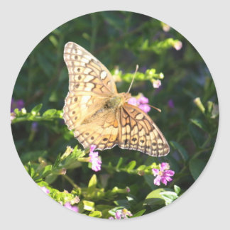 Small tan butterfly classic round sticker