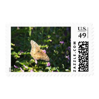 Small tan butterfly stamp