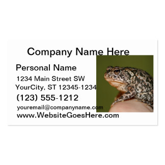 Small Toad Frog on finger against green door Business Card