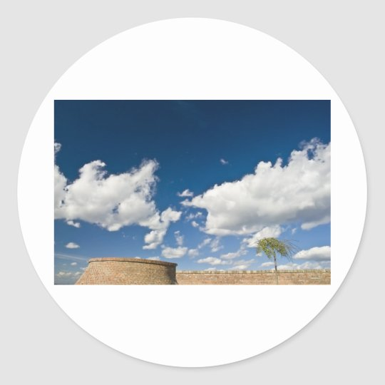 small tree, big sky and brick wall classic round sticker