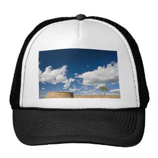 small tree, big sky and brick wall trucker hat
