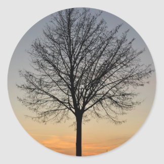 small tree sunset scenery, Baum Sonnenuntergang Classic Round Sticker