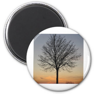 small tree sunset scenery, Baum Sonnenuntergang Magnet