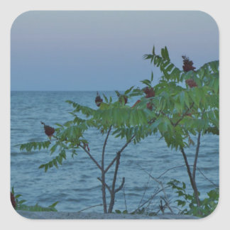 Small Trees on the Lakeshore Square Sticker