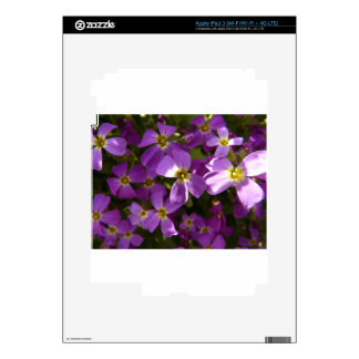 Small Violet Flowers iPad 3 Decal
