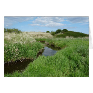 """""""Small Water Channel at Embleton Beach"""" (2) Card"""