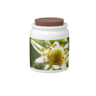 Small White Flower Candy Jar