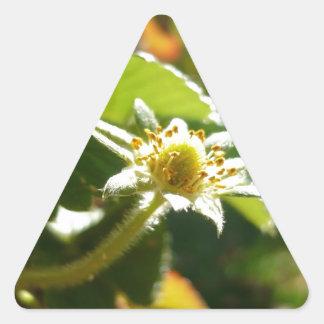 Small White Flower Triangle Sticker