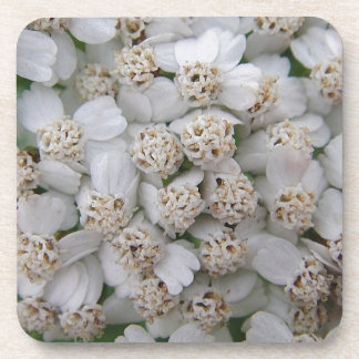 Small white game blooms beverage coasters