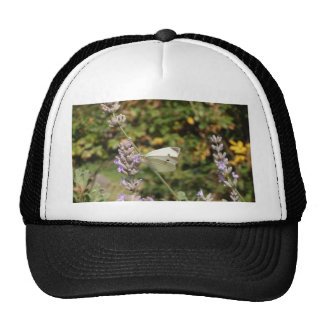 Small White Or Cabbage White Butterfly Trucker Hat