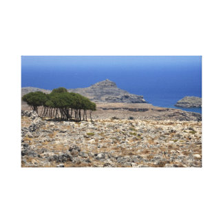 Small wood on Rhodes Canvas Print