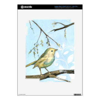 Small Yellow Bird Perched on a Branch Looking up iPad 3 Decal