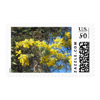 Small Yellow Flowers Postage