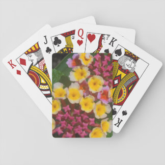 Small Yellow Tropical Flowers With Pink Buds Card Deck