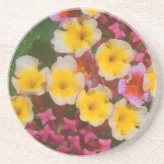 Small Yellow Tropical Flowers With Pink Buds Drink Coaster
