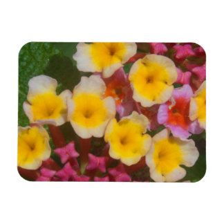 Small Yellow Tropical Flowers With Pink Buds Magnet
