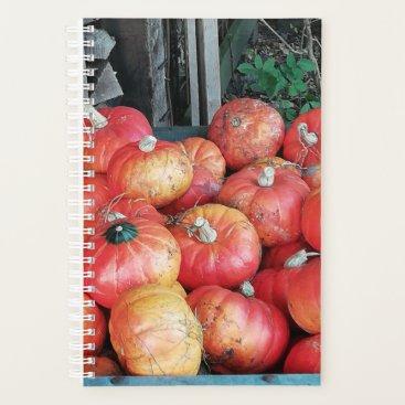 Smallish orange pumpkins in a wheelbarrow. planner