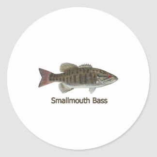Smallmouth Bass Art (titled) Classic Round Sticker