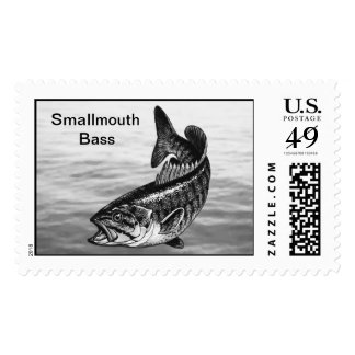 Smallmouth Bass Fishing Postage Stamp