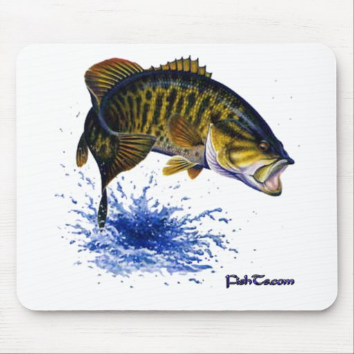Smallmouth Bass leaping Mouse Pads