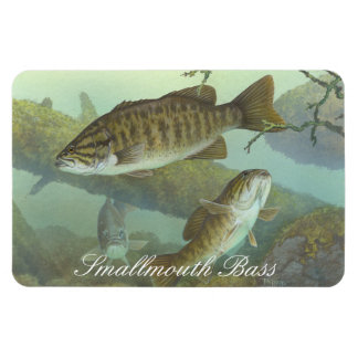 Smallmouth Bass Painting Magnet