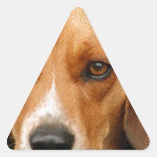 Smart Beautiful Beagle Hunting Dog Triangle Sticker