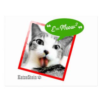 smart cat postcard