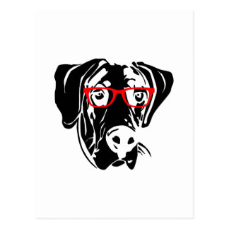 Smart Dog Great Dane with Glasses Postcard