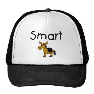 Smart Gorro
