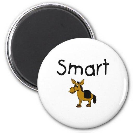 Smart Imán Redondo 5 Cm