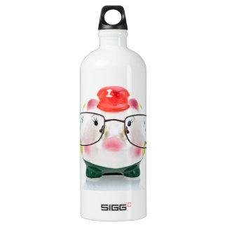 Smart Piggy Bank Aluminum Water Bottle