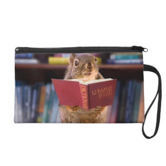 Smart Squirrel Reading a Dictionary Wristlet