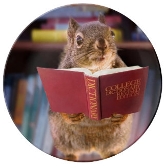 Smart Squirrel Reading a Dictionary Porcelain Plate