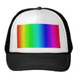smart stripes,rainbow trucker hat