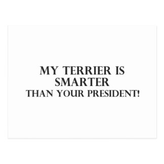 Smarter Than The President 1 Postcard