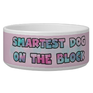 Smartest Dog on the Block Dog Dish