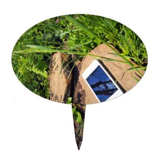 Smartphone en una roca en un prado decoraciones para tartas