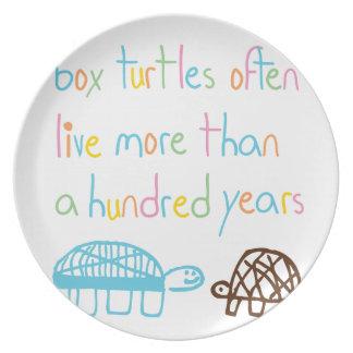 Smarts de la tortuga platos para fiestas